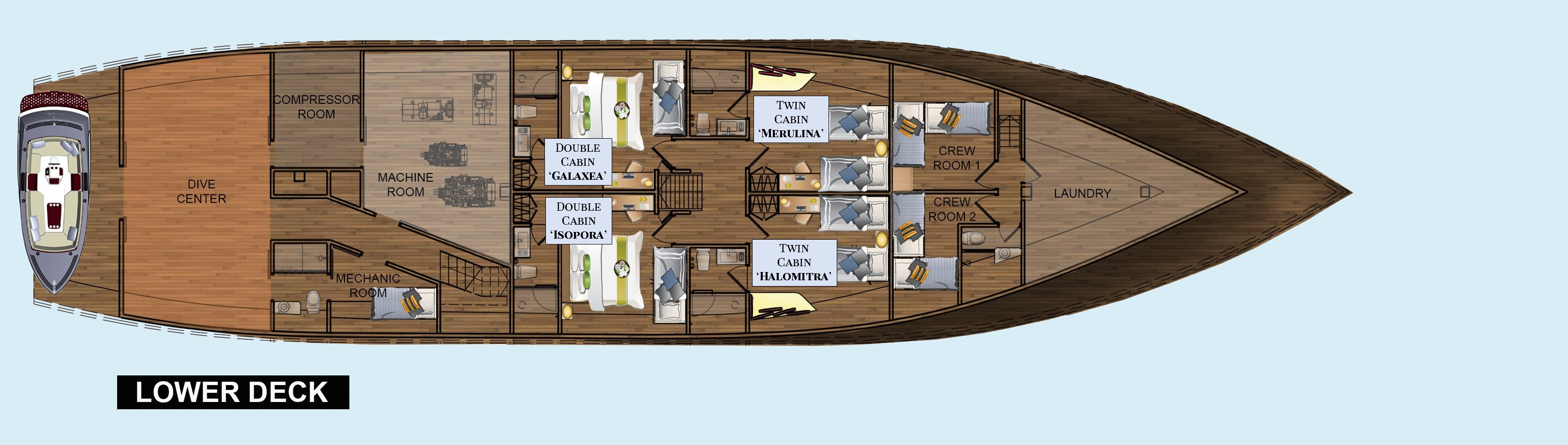 The layout plan of the lower deck of our Coralia Liveaboard in Indonesia