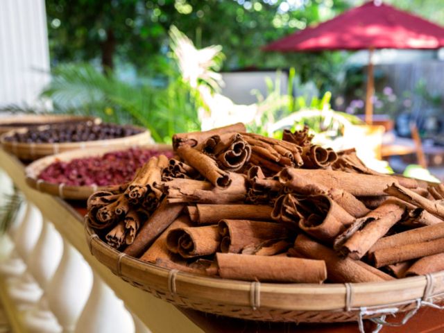 Fresh Cinnamon on the Banda Islands with Coralia Liveaboard in Indonesia